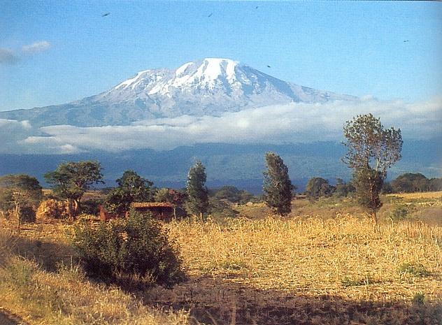 Kilimanjaro_-_Steve_coupland