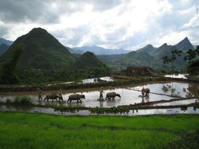 Vietnam, landschap in de omgeving van Sapa