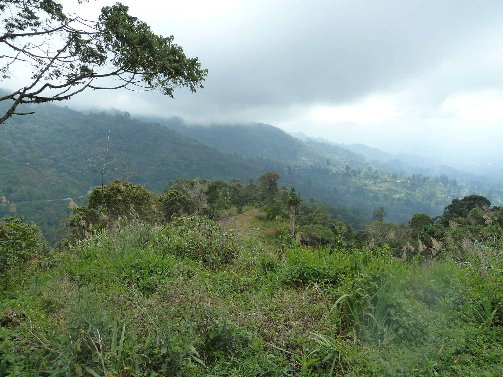 Landschap tussen Mt Hagen en Goroka