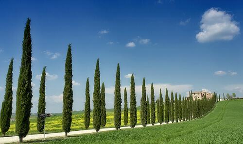 Motorreis Italië – Toscanië6