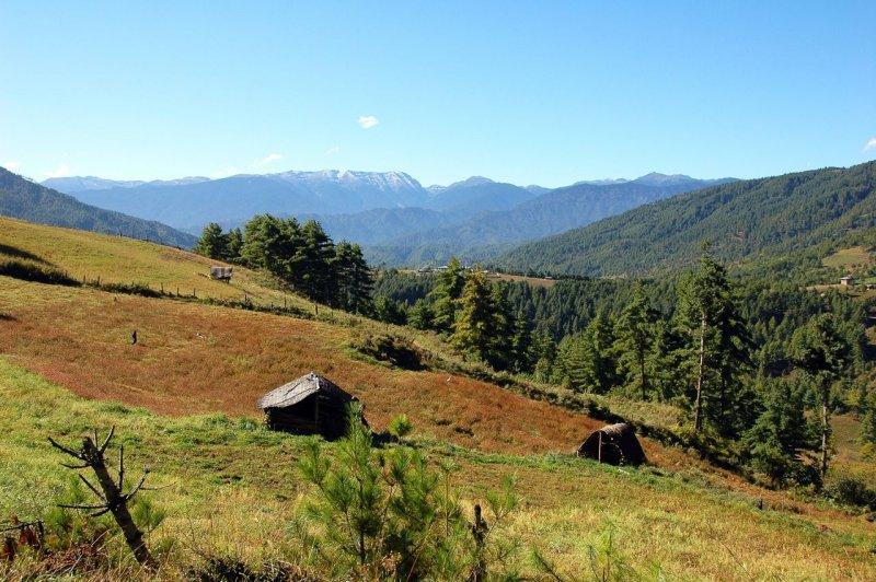 Birding reis Bhutan1