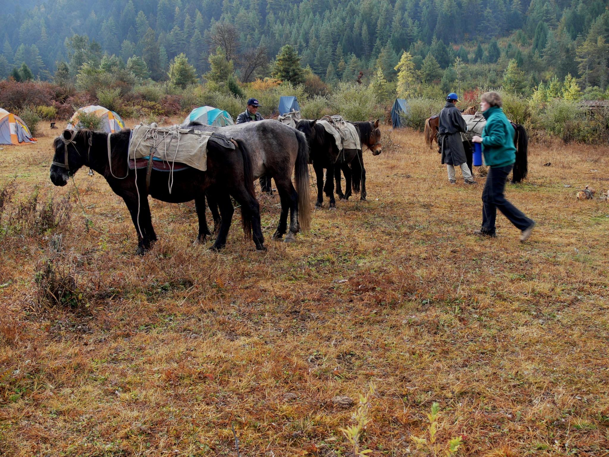 Bhutan reis – Land van de Donderdraak.13