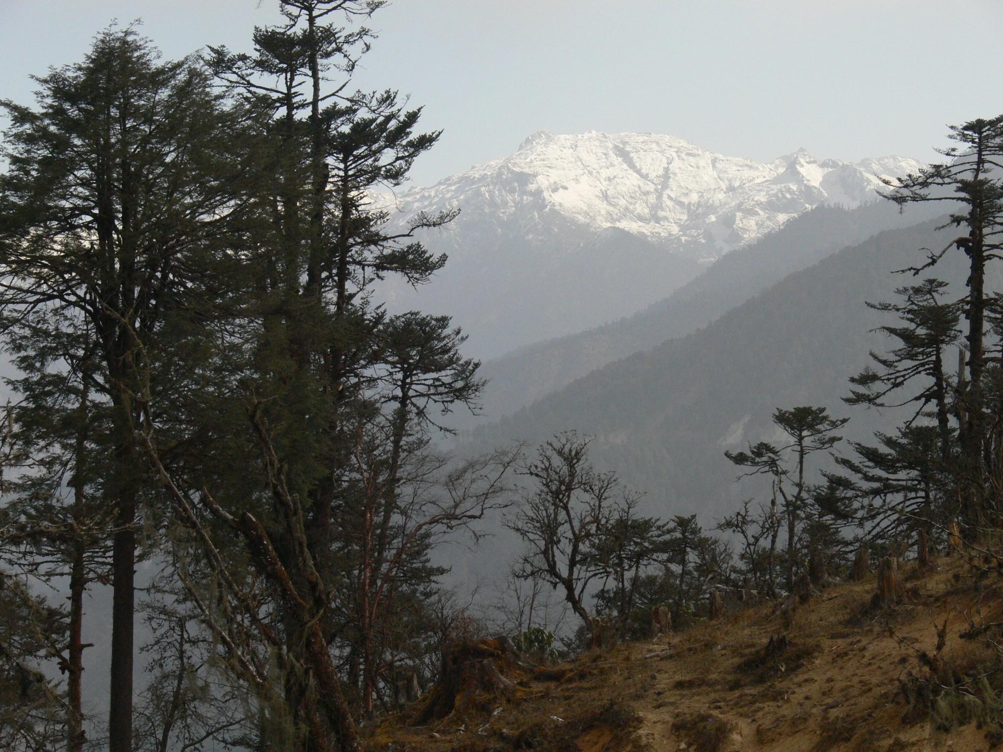 Birding reis Bhutan5