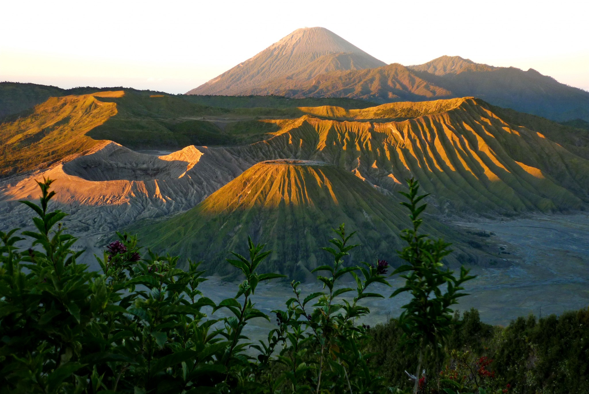Indonesië, Bromokrater - Oost Java