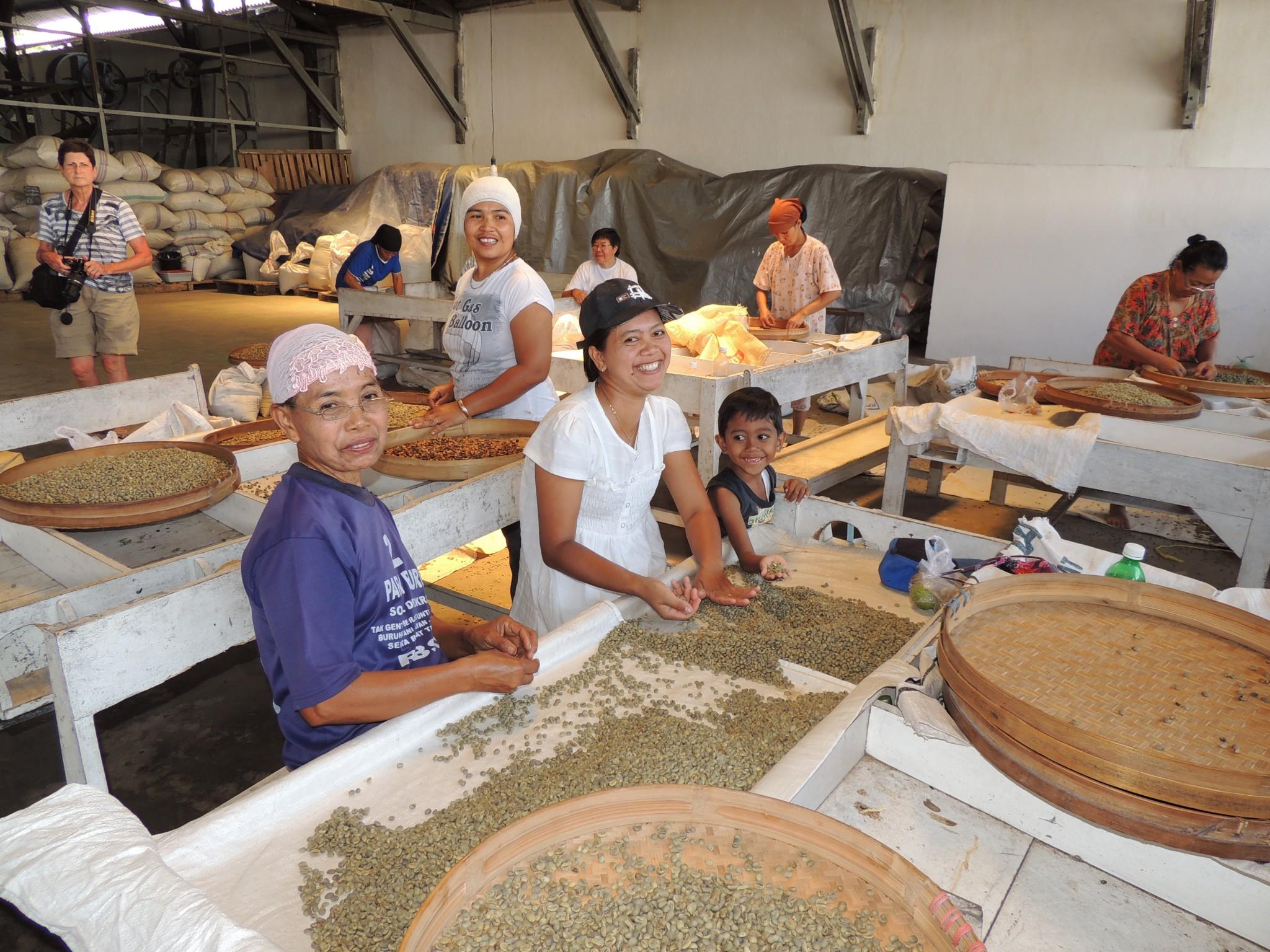 Indonësië, bezoek koffiefabriek- Oost Java