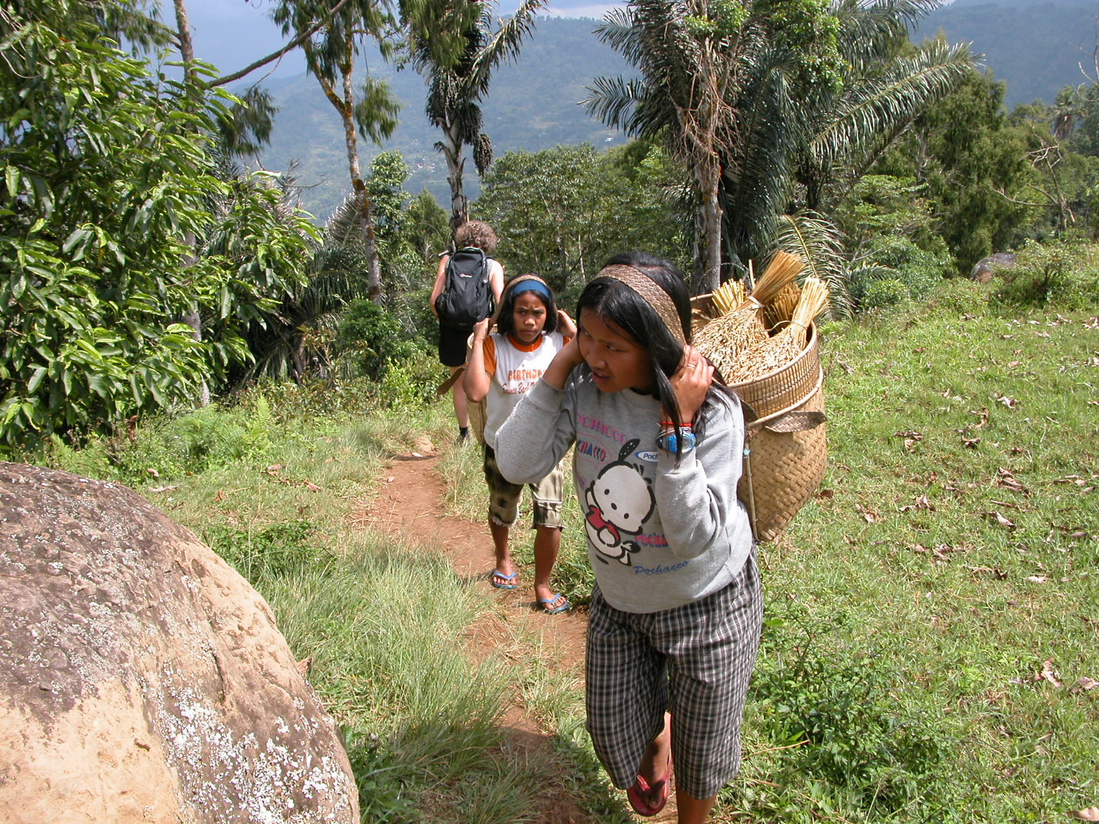 Indonesië, omgeving van Rantepao, Sulawesi