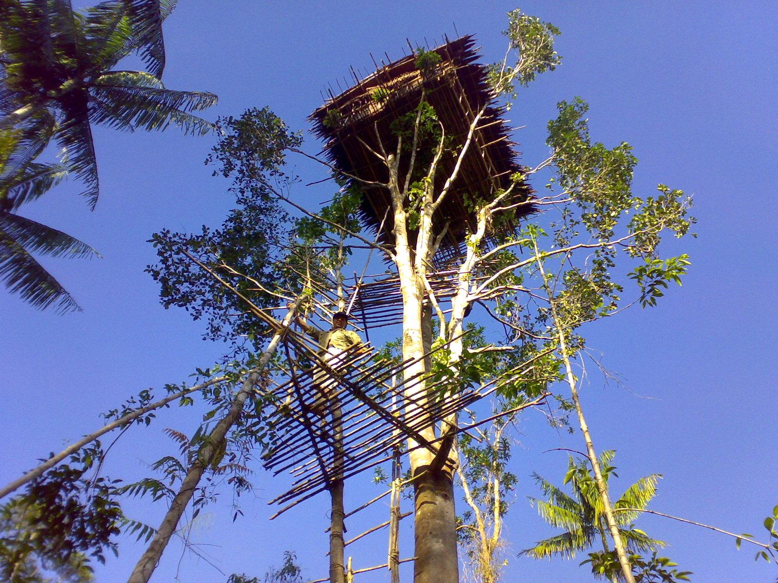avontuurlijke groepsreis Papua – The Lost World9