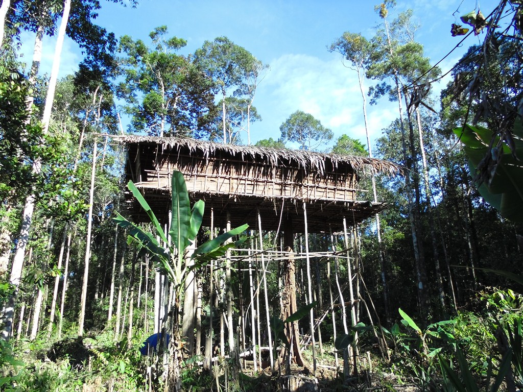 avontuurlijke groepsreis Papua – The Lost World6