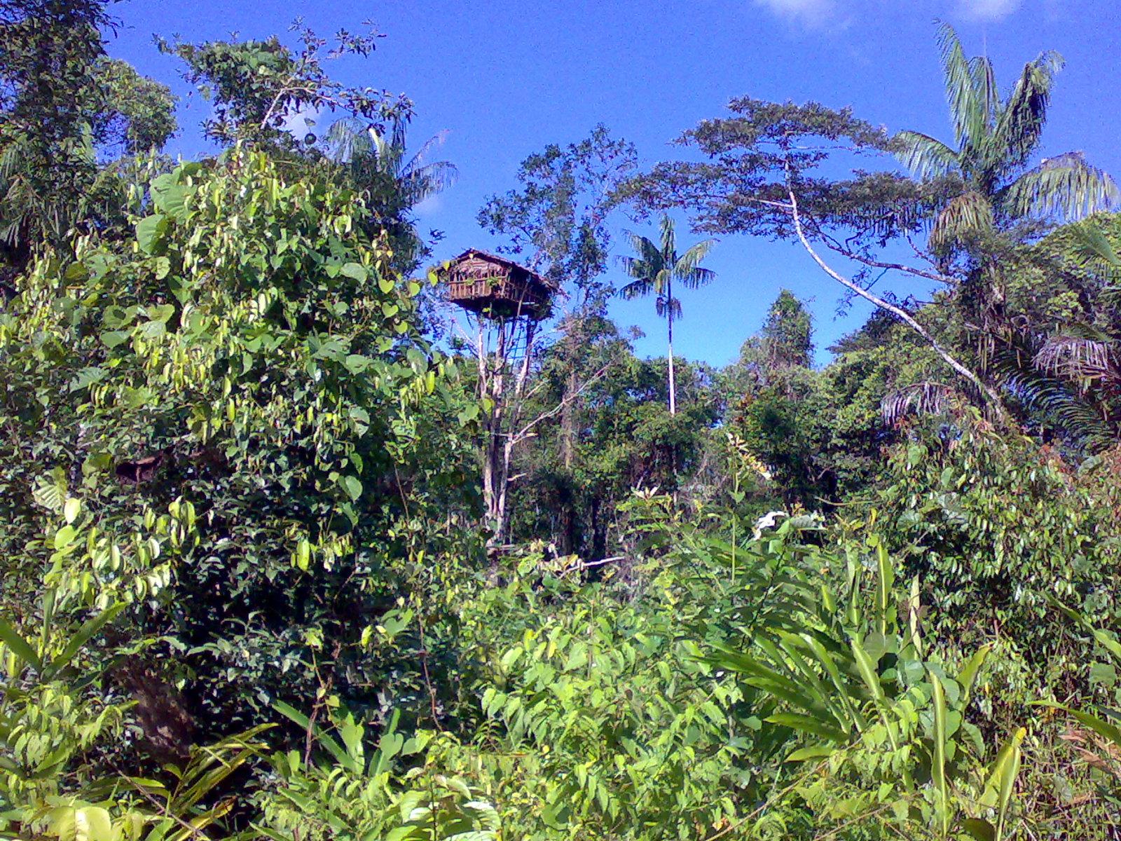 avontuurlijke groepsreis Papua – The Lost World1