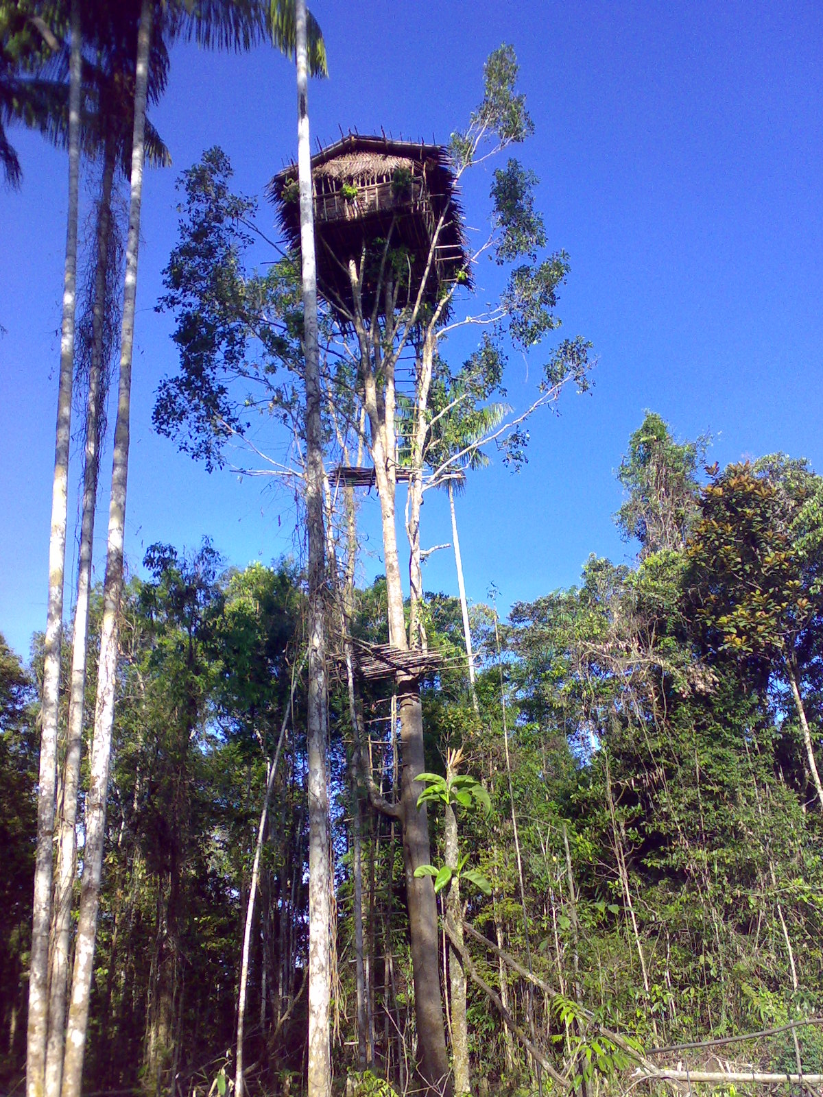 avontuurlijke groepsreis Papua – The Lost World10