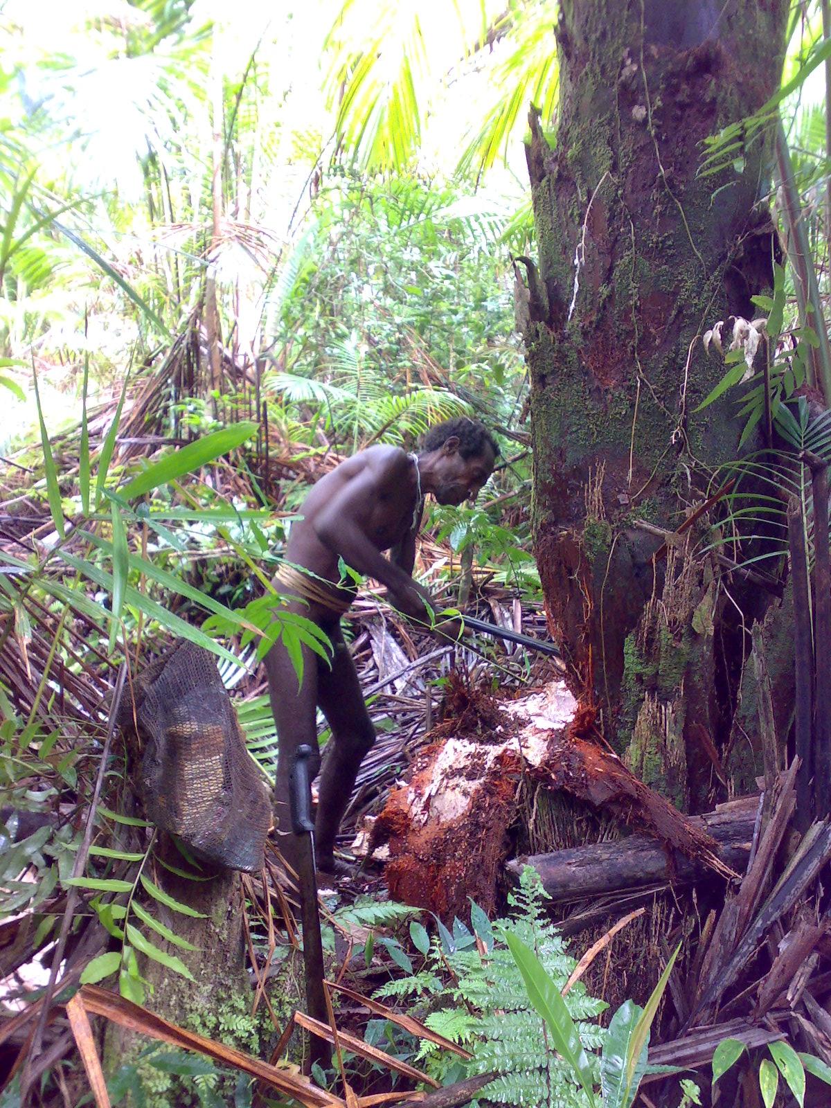 Papua reis – Asmat Fire13