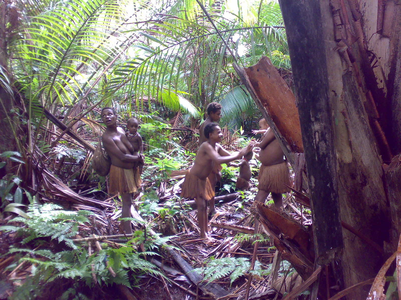 Papua reis – Asmat Fire12