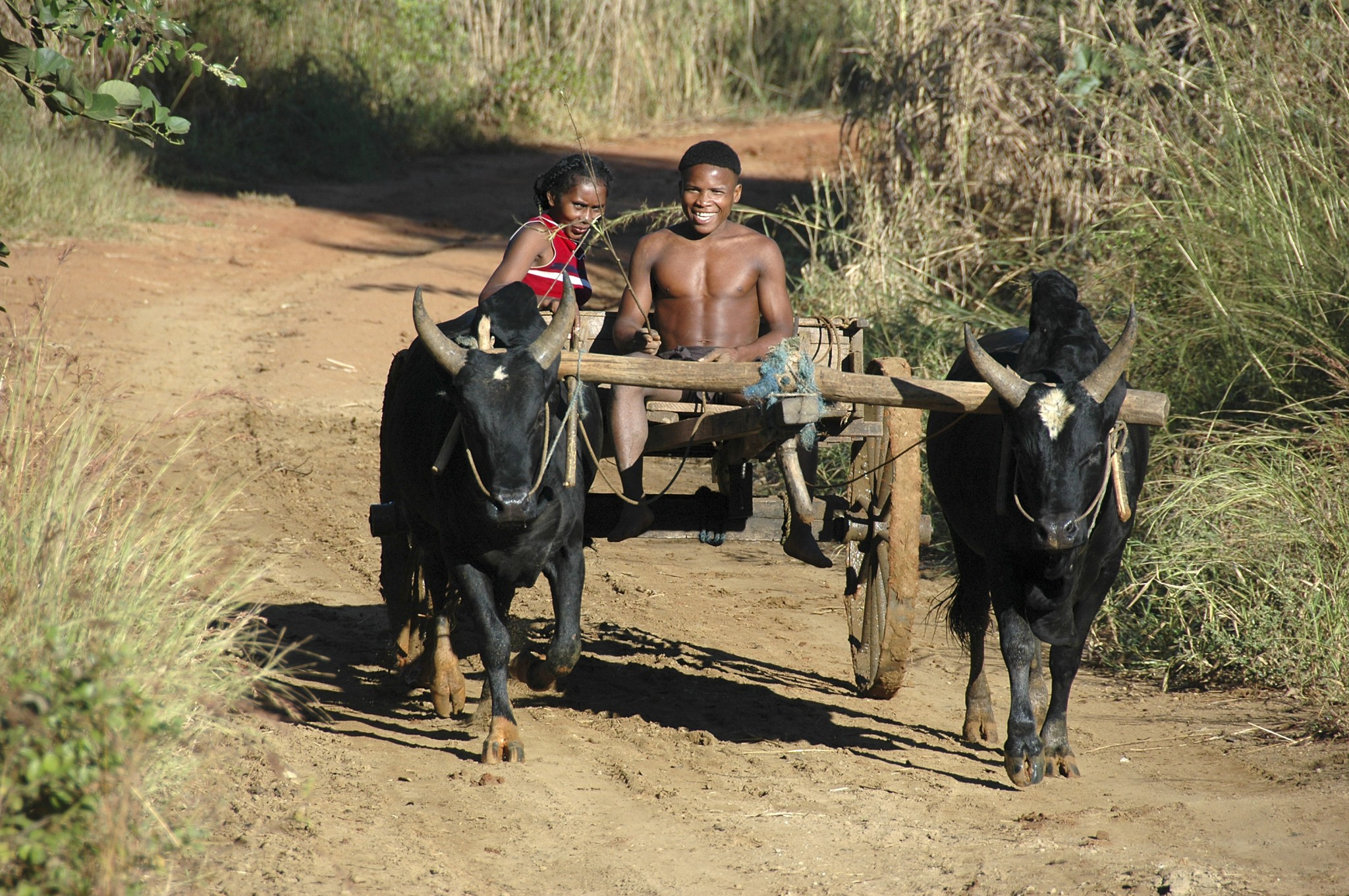 Madagascar: piste in het westen van Madagascar