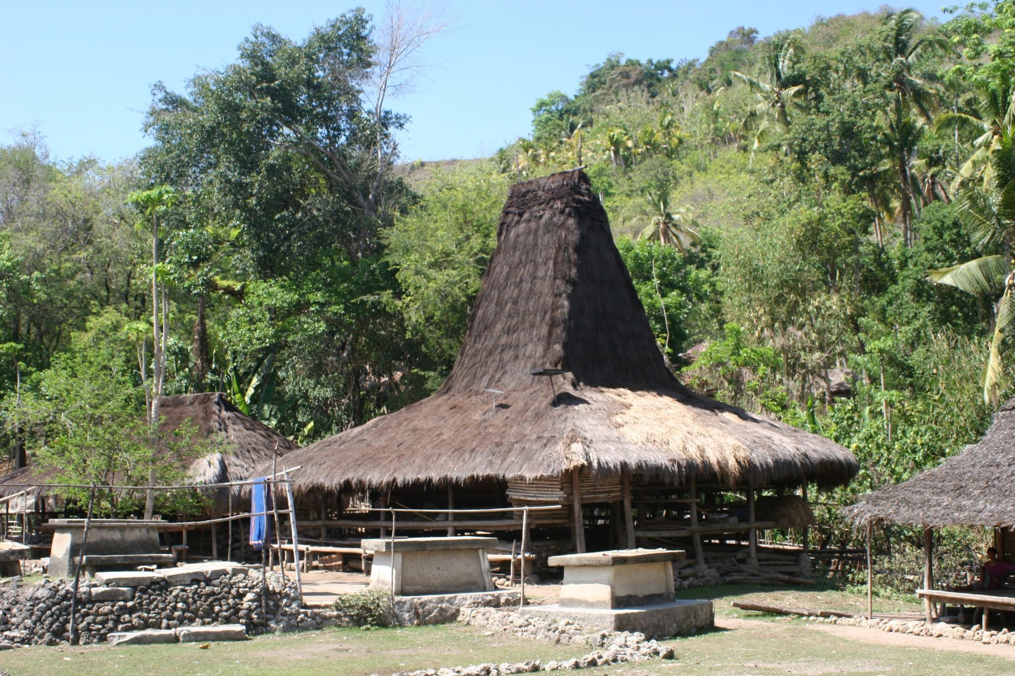 GROEPSREIS INDONESIE : KLEINE SUNDA – EILAND13
