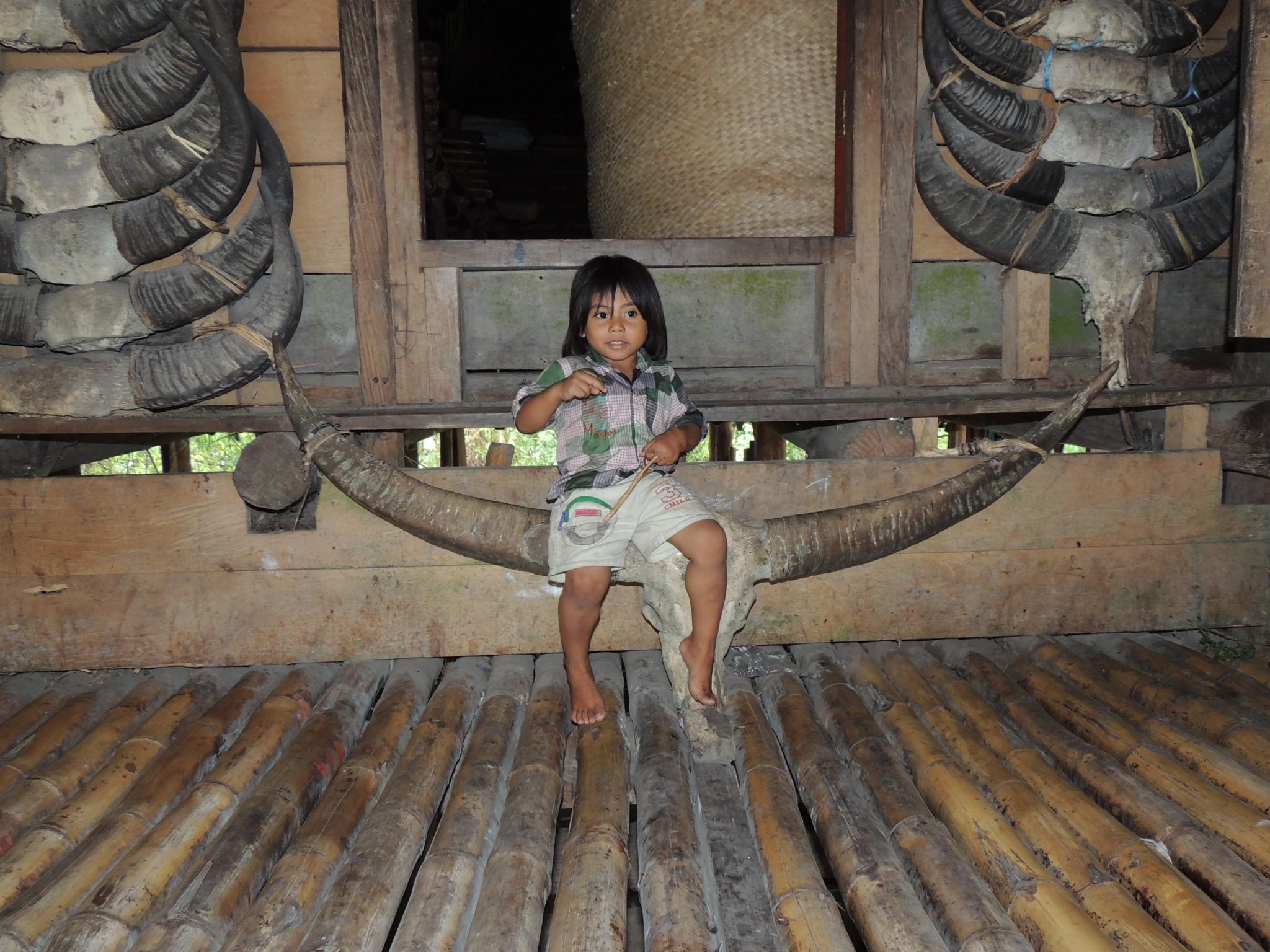 GROEPSREIS INDONESIE : KLEINE SUNDA – EILAND3
