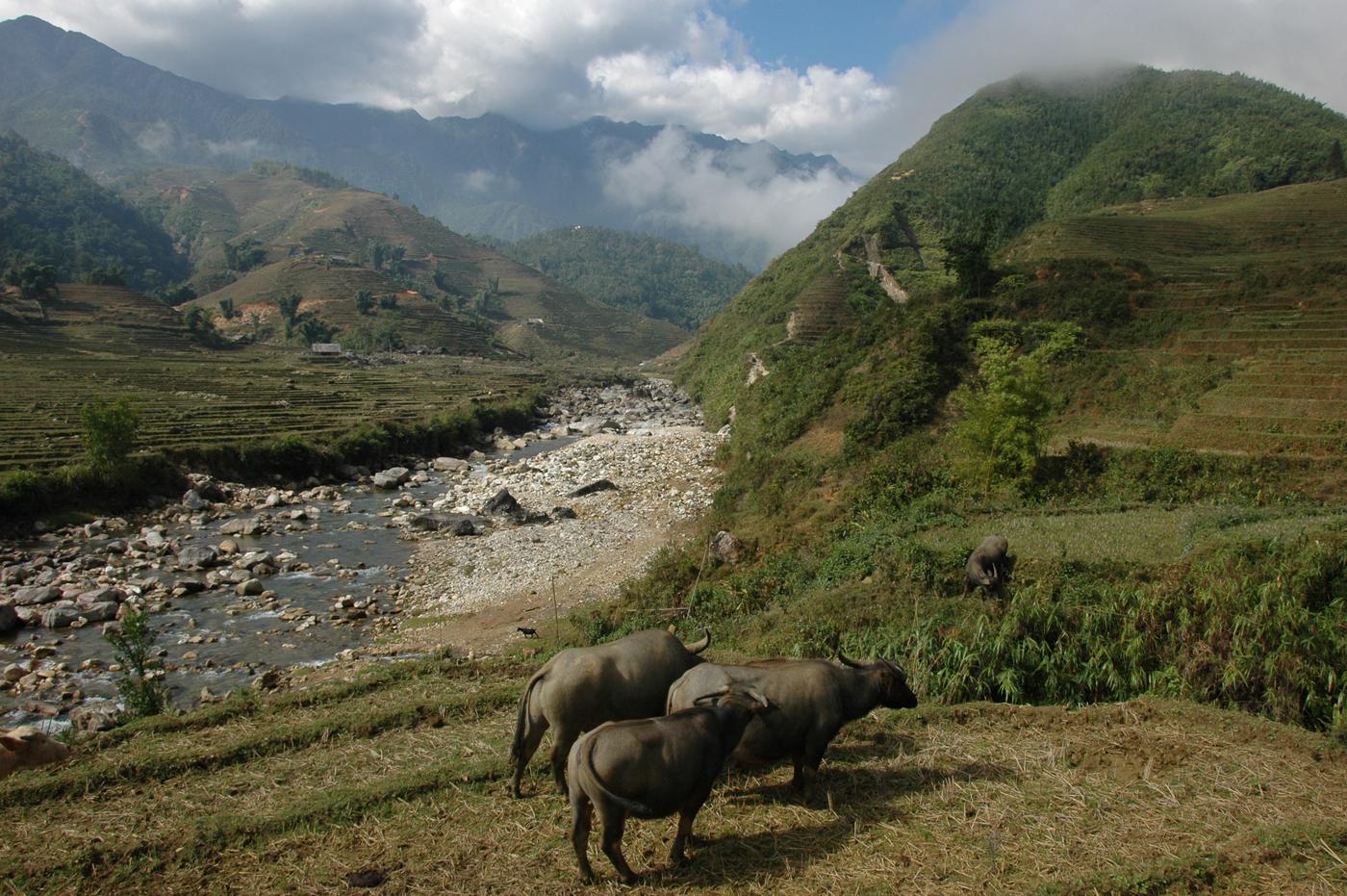 Vietnam, landschap in het Noorden
