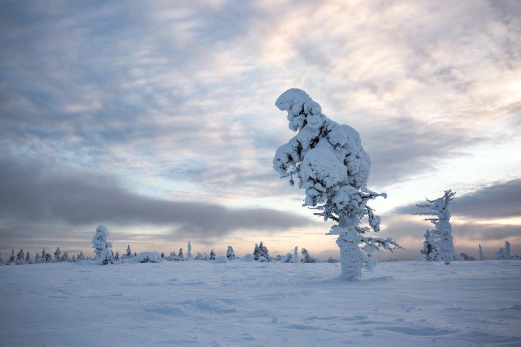 Mindervalide reis Fins Lapland